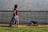 Denise Greer stated that closeness to the Ohio River and its easy access for walks has make her new life in Jeffersonville a joy. 8/24/17