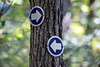 Signs and other markers keep hikers on path in the dense landscape of the Pine Creek Barrens Preserve. 9/21/17
