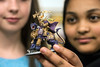 Knight Middle School students Madison Mitchell and Sumeya Abdalla take a closer look at one of the battle pieces used in their Nerd Nation board game sessions. 10/4/17