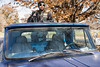 """Biker Donald """"Doc Holiday"""" Burrus stands atop his vintage pick-up truck on Thursday in the same location from where he witnessed the murder of his friend William """"Biggs"""" McKee during the 2016 shootings at the Juice Bowl in Shawnee Park. 11/23/17"""