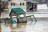 Homes, garages and businesses were flooded along West Point's Elm Street on Sunday afternoon as the Ohio River continued to rise from a week's worth of rain. 2/25/18