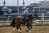 Horses gallop along the track at Churchill Downs during a Wednesday morning workout. 4/11/18