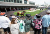 A horse named Pop Culture is paraded through the paddock at Churchill Downs before the first race during Thurby. 5/3/18