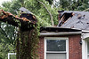 A house in the Bon Air neighborhood just south of Seneca Park was devastated when high winds on Thursday brought down a tree on the property. No injuries were reported. 6/1/18