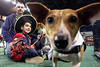 The Shelp family of Scranton, Penn came to Louisville for the GIE+ Expo, but will return home with a new family member after adopting a 3-year-old Jack Russell mix named Chill during a side event called Mutt Madness in Freedom Hall on Thursday. 10/18/18