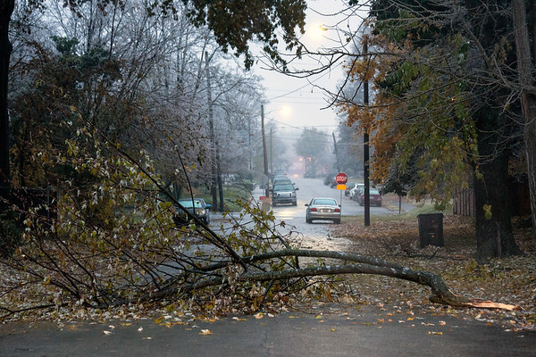 Tree branches blocked many of the neighborhood streets in Germantown after an ice storm wreaked havoc overnight. 11/15/18