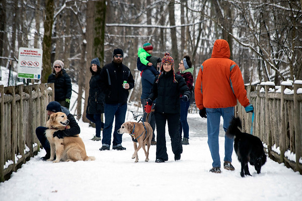 Dogs and sledders filled Cherokee Park on Saturday morning as Louisville awoke to its first snowfall of 2019. 1/12/19