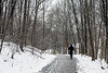 Runners in Cherokee Park stayed the course despite the Saturday snow. 1/12/19