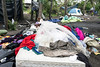 A mound of old clothes sits atop a mattress in a former homeless camp ready to be cleared out by CSX crews on Monday morning. 4/29/19