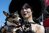 Raven Meredith and her dog Sunny were on the scene at the Louisville Halloween Parade & Festival on Saturday. 10/5/19