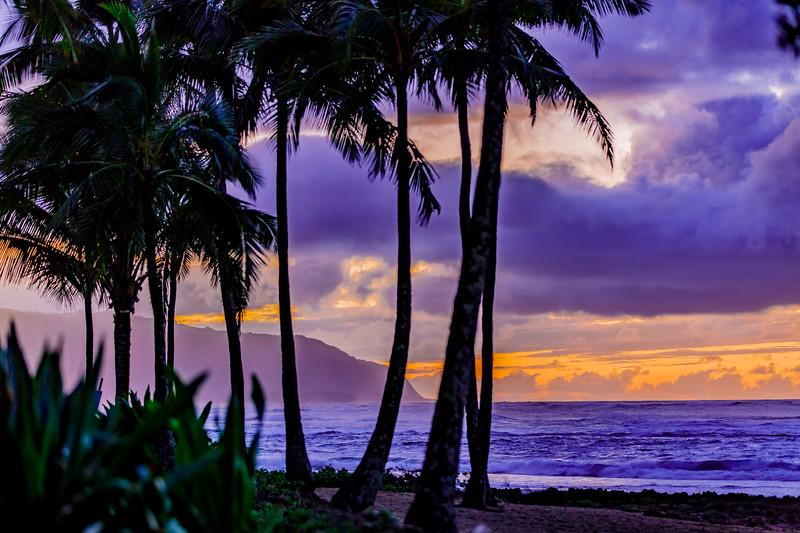 Hawaii-3Feb-HiRes-07