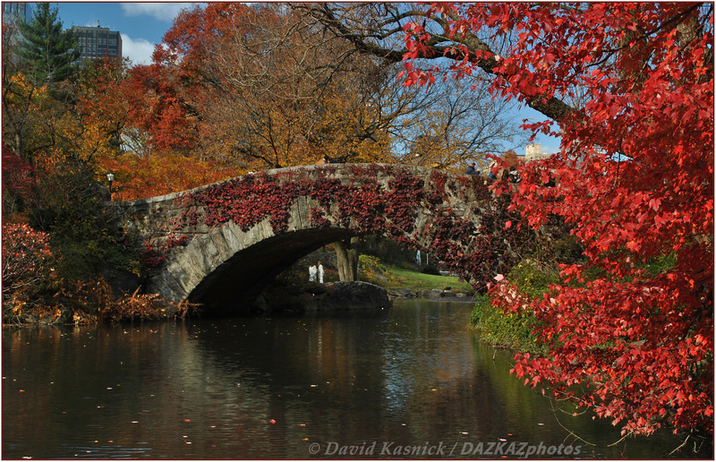 Central Park Bridge 1 - New York City