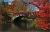 Central Park Bridge 1 - New York City