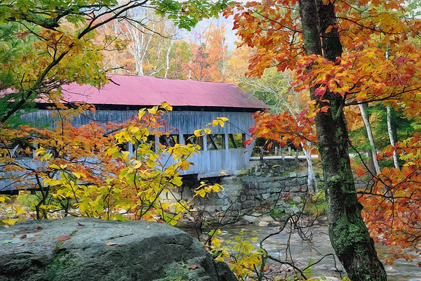 """Albany Covered Bridge """