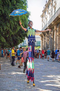 Stilt Walker, Plaza de Armas