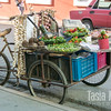 Pedal-powered produce