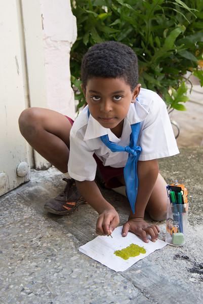 Young Artist, Havana.