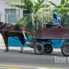 Working horse cart
