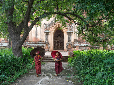 Two Novice Monks  of Burma