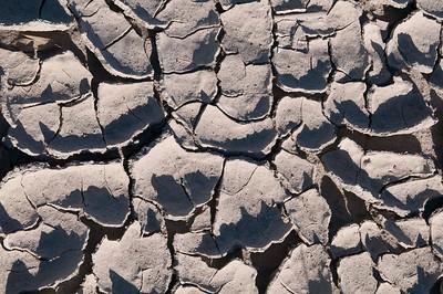 SALTON SEA: MUD FLATS