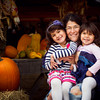 Three Little Pumpkins - Nicasio, CA