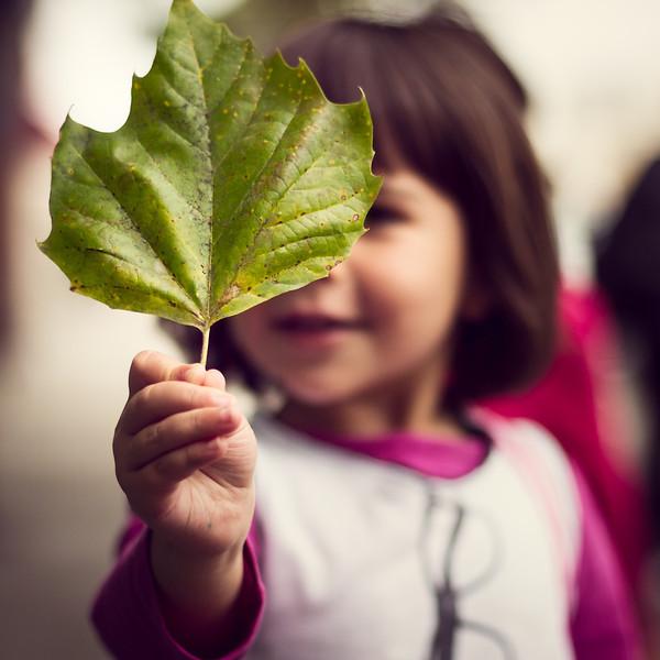 One Leaf - San Francisco, CA