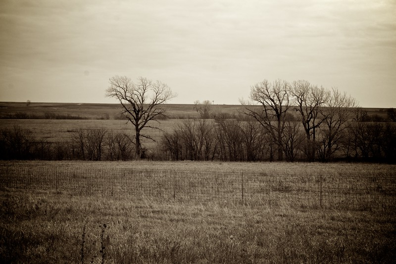 Day 100 -This is the second time around of doing the Photo-a-day and the second time I forgot to observe the milestone of photo 100.  Never the less I captured the prairie of Kansas. -DECEMBER 14