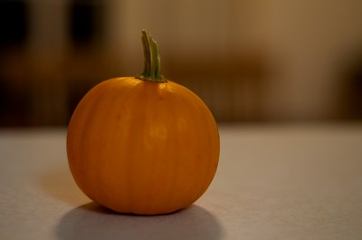 Day 039 -Nothing livens up the place like a mini pumpkin.  It's super cute and I'm happy to have it.
