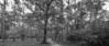 SSJ_20131201_00023-Edit-1