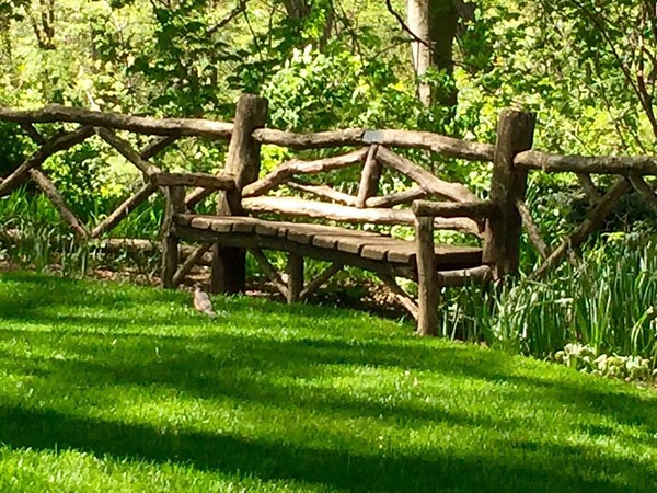 Central Park, Manhattan (C) Daniel Yoffee