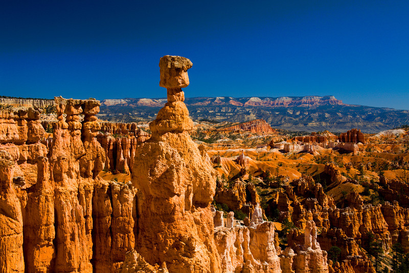 "Thor's Hammer, Bryce National Park, Utah<br /> Hiking down into this canyon was a thrill until it was time to hike back out. That's when I knew how out of shape I was. There were these folks in their 80′s that were zipping back and forth, up the switch backs like it was nothing. I was embarrassed! I came back home and put myself on a diet and lost 30 pounds. Nothing like a bunch of 80 somethings to motivate you back into shape. Living at sea level in Phoenix, I blamed it on the high altitude in Utah. I guess in the end ""no excuses""!"