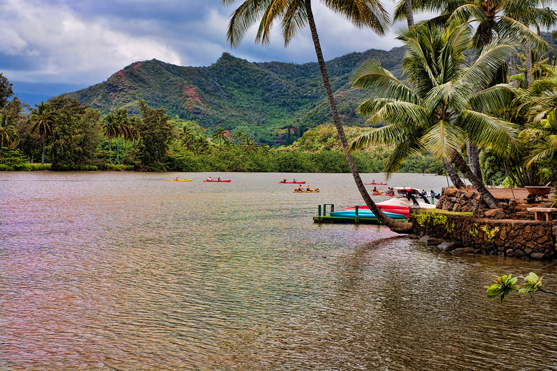 """Wailua River, Kauai, Hawaii-I had heard that shark travel up this river in Kauai once in a while and people have been attacked. So kayaking for me was out. I thought maybe skydiving might be safer. I then decided photographing from the shore was maybe safer, and so, this picture was a result of all that analysis.<br /> <br /> Many films since the fifties have been filmed on or around the Wailua river, including Blue Hawaii, """"The Lost World""""-Jurassic Park, """"Outbreak"""" and more recently the real life story of the girl who lost her arm to a shark attack-""""Soul Surfer"""". A scene from the movie was filmed just upstream from this location with Carrie Underwood.<br /> <br /> The Wailua River winds through several ecosystems.  From forested river banks and tall cliffs to lush green rain forest as you wind upriver."""
