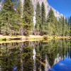 "Reflections of El Capitan, Yosemite National Park, Ca<br /> It was one of those, ""I wonder if I can get the whole thing in the picture"" moments. El Capitan was huge in front of me as I searched for a possible spot to catch a mirror image in the stream. The other challenge was I knew I had to be on a bit higher ground for the reflection in the water to line up correct. I saw an embankment further down the stream with still water in front of it and thought it might work, so I headed for it. Got up on top of the ledge and, wallah, it was a perfect spot. With my wide angle lens stretched out to the max I framed up the perfect picture reflection of El Capitan. As a landscape photographer, you get excited when it all comes together. I used a 16-35mm canon lens to capture this shot. Three images were taken and then merged into Photomatix, then post-processed in Topaz and CS5."