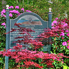 Red Maple and Rhododendron in Bar Harbor, Maine<br /> We've found early June, late May is a great time to visit Bar Harbor, Maine. Flowers are in full bloom and the tourist season hasn't quite begun. Easy time to find B&B's and we love the cooler weather and sitting out on porches at night. Don't get much chance to do that in Phoenix in the summer. This sign leads down to a path that ends up at the bay. After dinner is a great time to walk along the bay and enjoy the sunset.