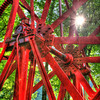 """Big Wheel Keep On Turning""-Traveling through West Virginia, enroute to Blackwater Falls, I saw this interesting contraption on the side of the road and just had to stop and take a picture of it. The sun was shining through the trees and I looked for an angle that would let the light shine through."