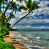"""Pua Mana Beach Front-Lahaina, Maui<br /> This area of Lahaina was perfect for beach shots. The palm trees swung out toward the ocean, so it was easy to frame a good picture. I learned of the world renowned Australian photographer Peter Lik while visiting Lahaina. He has a Photo Gallery in downtown Lahaina and it's quite impressive. I was inspired by his landscape photography some years ago and still try to figure out some of his techniques. He's worth the visit.  <a href=""""http://www.lik.com"""">http://www.lik.com</a>"""
