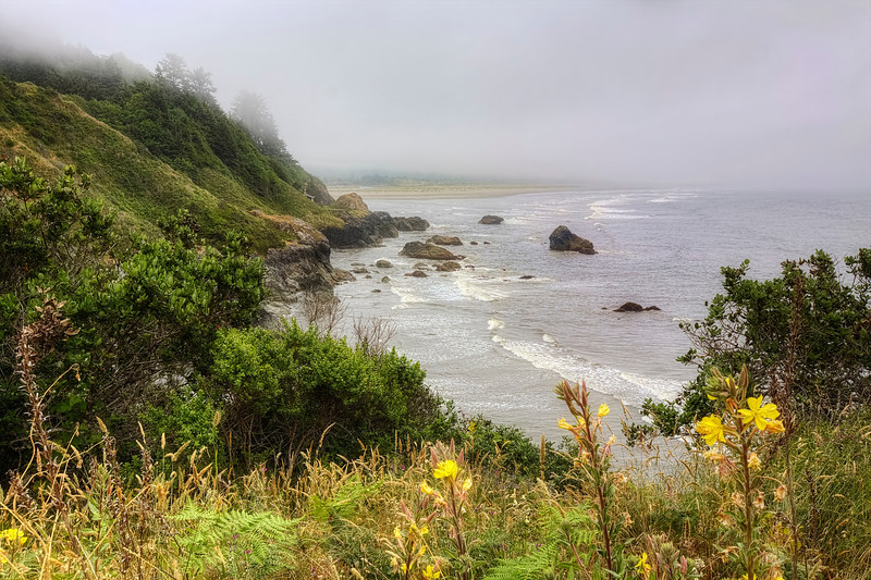 The Rugged Oregon Coast<br /> This is the 1st year in many that we didn't tour along the Oregon coast. I really wanted to, but it didn't fit into our busy travel schedule this summer. Who knows it might still happen, but other trips are planned for the coming weeks.<br /> <br /> This photo was taken along the coast cliffs north of Cannon Beach, Oregon.