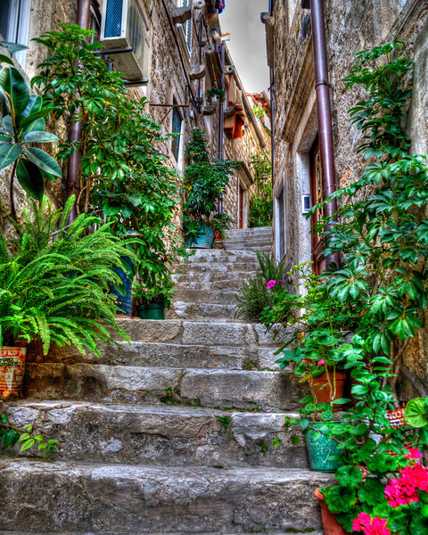 Time Worn Stairs of Dubrovnik, Croatia<br /> Old town Dubrovnik has thousands of stairs with everyone upstaging the other with fancy entryways and flowered pots. This was an arduous climb, going up and down each corridor looking for the most photogenic doors and stairways. But I was determined to find them all one by one. I usually come back from these photo excursions, losing weight. I guess there's easier ways to do it, just not as much fun. Dubrovnik is one of those places you wish you had a week, just to try all the different fancy outdoor restaurants that line the cobblestone breezeways.