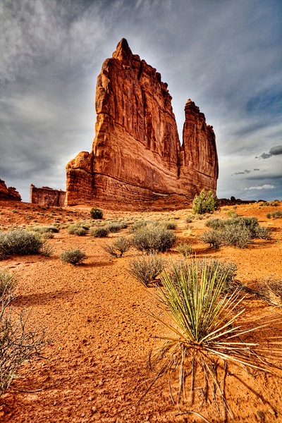 """""""The Organ""""-Arches National Park, Utah-Recently I went up to Utah to hike around the National Parks of Arches and Canyonlands. I kept coming back to this area for morning and evening shots and hoping for some interesting cloud cover. To catch this perspective I laid on the ground in the sand with this little yucca plant within 2 feet of the lens, hoping I could get it and """"The Organ"""" rock formation in focus. I think I succeeded. The yucca is 1 foot high, the rock formation felt 500 feet high."""