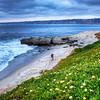 """Buy This Photo""- ""Lover's Cove""-La Jolla, California-The ritzy and glitzy town of La Jolla north of San Diego sits on the hill above this beautiful stretch of beach. Flowers blanket the cliffs and a nice couple conveniently were enjoying the evening as I patiently waited for a sunset that didn't happen. In spite of the that, the colors were vibrant and the clouds added to the subdued mood of this surreal moment. See my gallery above for all my photos."