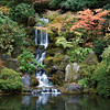 Waterfalls at Japanese Gardens, Portland, Oregon<br /> apenese Gardens are always alot of fun to photograph. Portland's  Japanese Gardens, has one of the most impressive man-made waterfalls I've ever seen. I don't know who designed it, but it definitely is a work of art. The Red Maple trees set it off so colorfully and the water cascades down tiers that look quite natural.