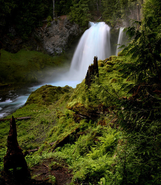 """""""Sahalie Falls on the McKenzie River""""-One of Oregons best waterfalls, weaving through the old growth forest with a loop trail down past another of my favorites-Koosah Falls. I've wondered this forest many times, usually as an excuse to get out of the heat of Arizona. The cool current that these falls create is incredible. The aqua blue hue through the middle of the falls is naturale. If you're ever in Eugene, Oregon, don't miss this stop. Take Hwy 126 east for 68 miles and follow the signs. Worth a hike and view."""
