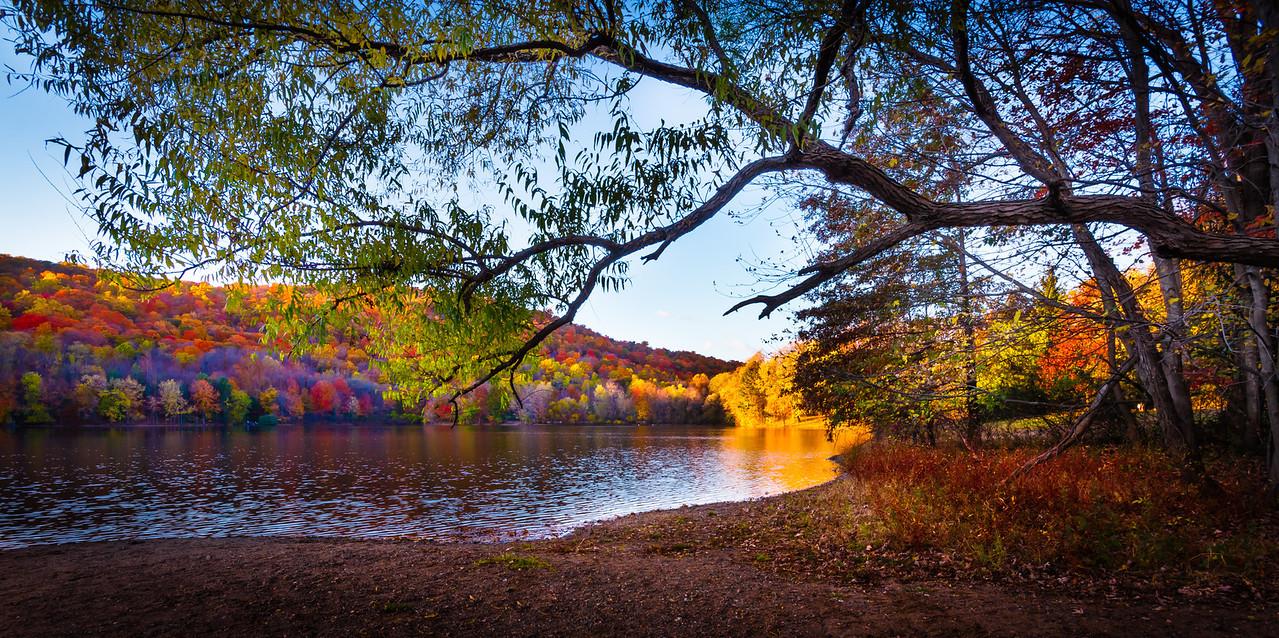 Fall Color Extravaganza