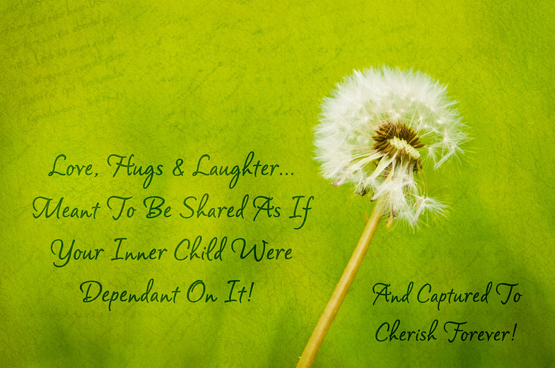 Love, Hugs & Laughter… Meant To Be Shared As If Your Inner Child Were Dependant On It! - Cindy Colbert ~ Co-Bear Photography