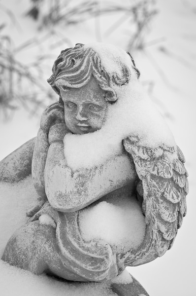 Stone Cold Snow Angel - Now that's cold! And how my bones feel today.