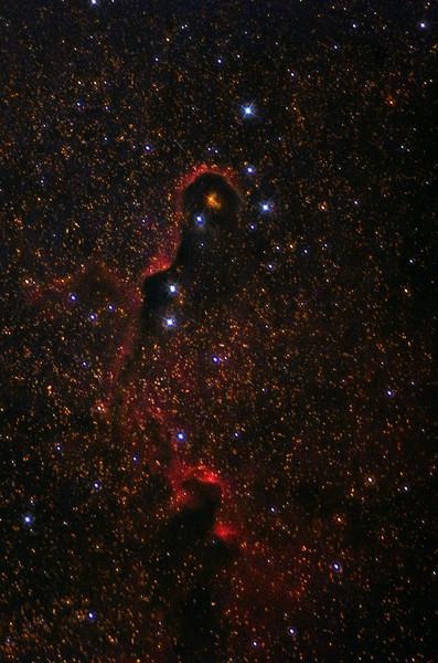 IC 1396a Elephant Trunk Nebula 08172020 copy