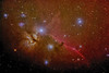 horsehead and flame 11112918 600mm