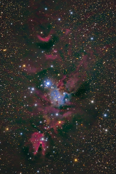 NGC 2264 Cone Nebuila and Christmas Tree Cluster 10172020