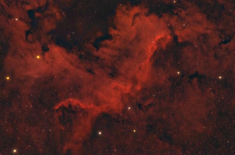 NGC 7000 Cygnus Wall 05132021