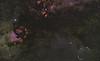 cygnus 06122020 d810 85mm